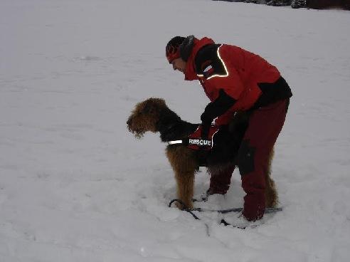 Sněhové nadšení