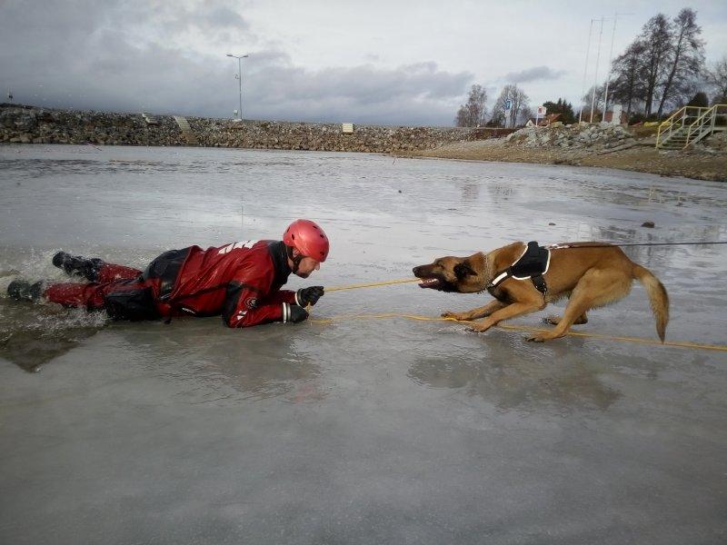 Záchrana z ledu