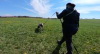 Trénink na oslavu dne záchranného psa